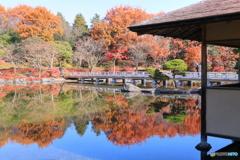日本庭園の映り込み