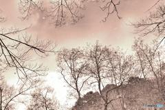 セピア色の景色(2)