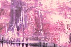 水の中の景色