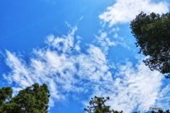 夏の青空と飛行機