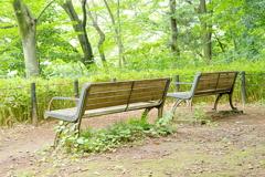 三宝寺池のベンチ