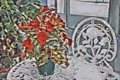 絵画的ベゴニアと白い薔薇
