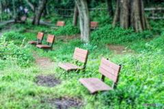 森の小人用ベンチ
