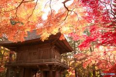 山門を彩る(2)