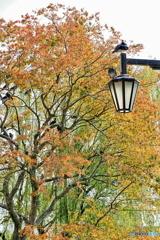 都会の秋色を楽しむ平和の天使