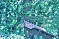 映り込んだベンチ