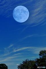 秋の雲と月