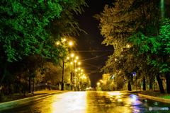 雨上がりの夜道