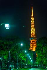 深夜の東京タワー