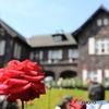 薔薇の邸宅