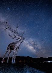 満天の星空を望む