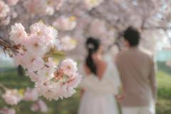 ふたりきりの結婚式