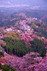 金峯山寺の眺め2