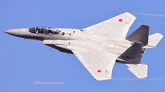 岐阜航空祭 F-15