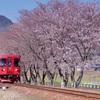 長良川鉄道 桜浪漫Ⅱ