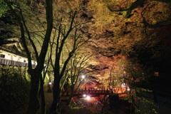 横蔵寺ライトアップⅥ