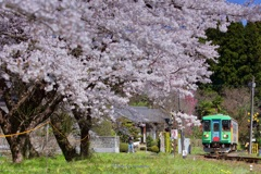 桜樽見鉄道Ⅲ