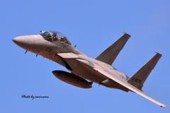 2019岐阜航空祭 F-15