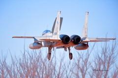 岐阜基地F-15J