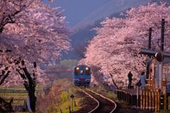 桜樽見鉄道Ⅱ