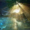 円原川の光芒 Ⅱ