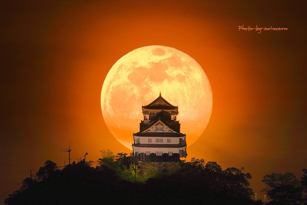 満月の夜には...