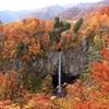 白水の滝秋の彩