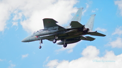 岐阜基地 F-15