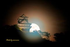 岐阜城と朧月