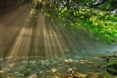 円原川の光芒Ⅳ