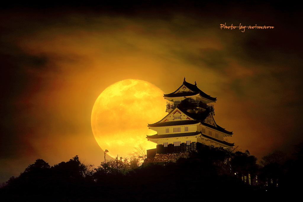 岐阜城と月
