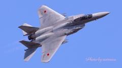 岐阜基地航空祭F-15