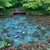 絵のような池