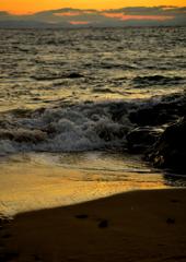 黄金色のビーチ