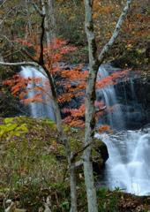 秋・流れる