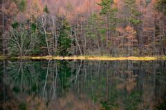 晩秋の御射鹿池