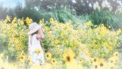 向日葵畑の思い出