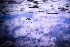 潮溜りの中の空