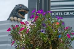 花とゴジラ