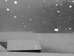 ハートな雪にハッとした♡
