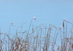 るり沼にて