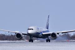 Dreamliner Touchdown