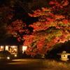 晩秋の夜長