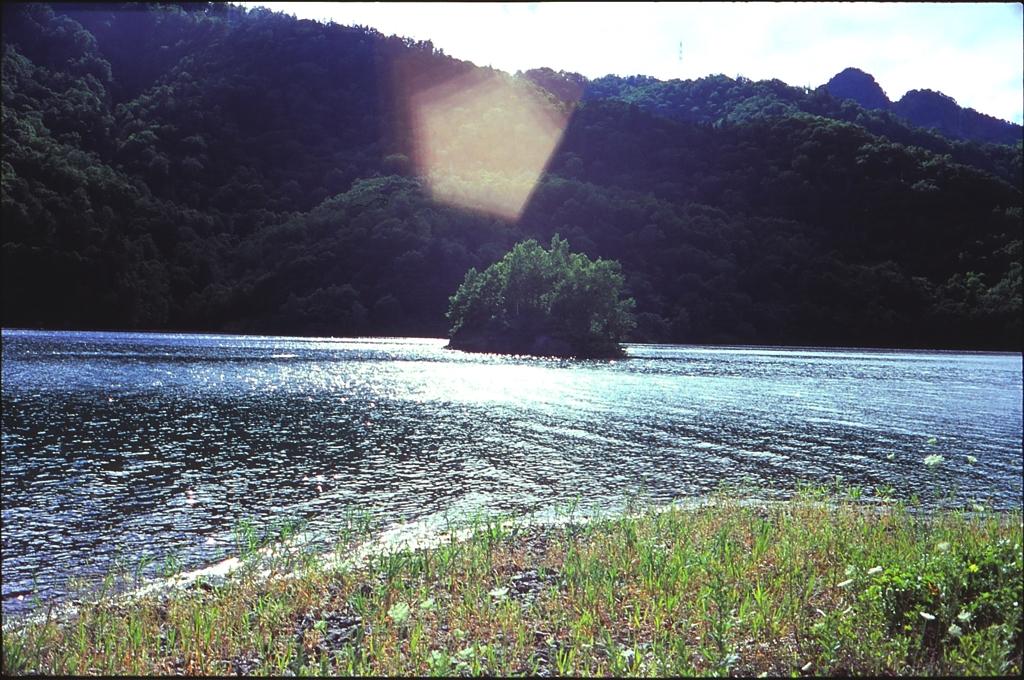 穏やかなダム湖で・・・