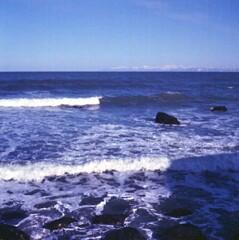 冷たい波・・・