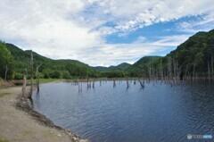 ダム湖畔の静けさ・・・
