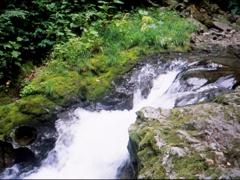 フィルムで平和の滝