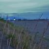 臼谷の海岸 夜明けて