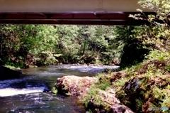 橋下の景色・・・