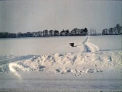 地吹雪の後で・・
